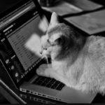 【Windows用】圧縮解凍フリーソフト7-Zipの設定方法や使い方は?ファイルを開くのはコレが一番!